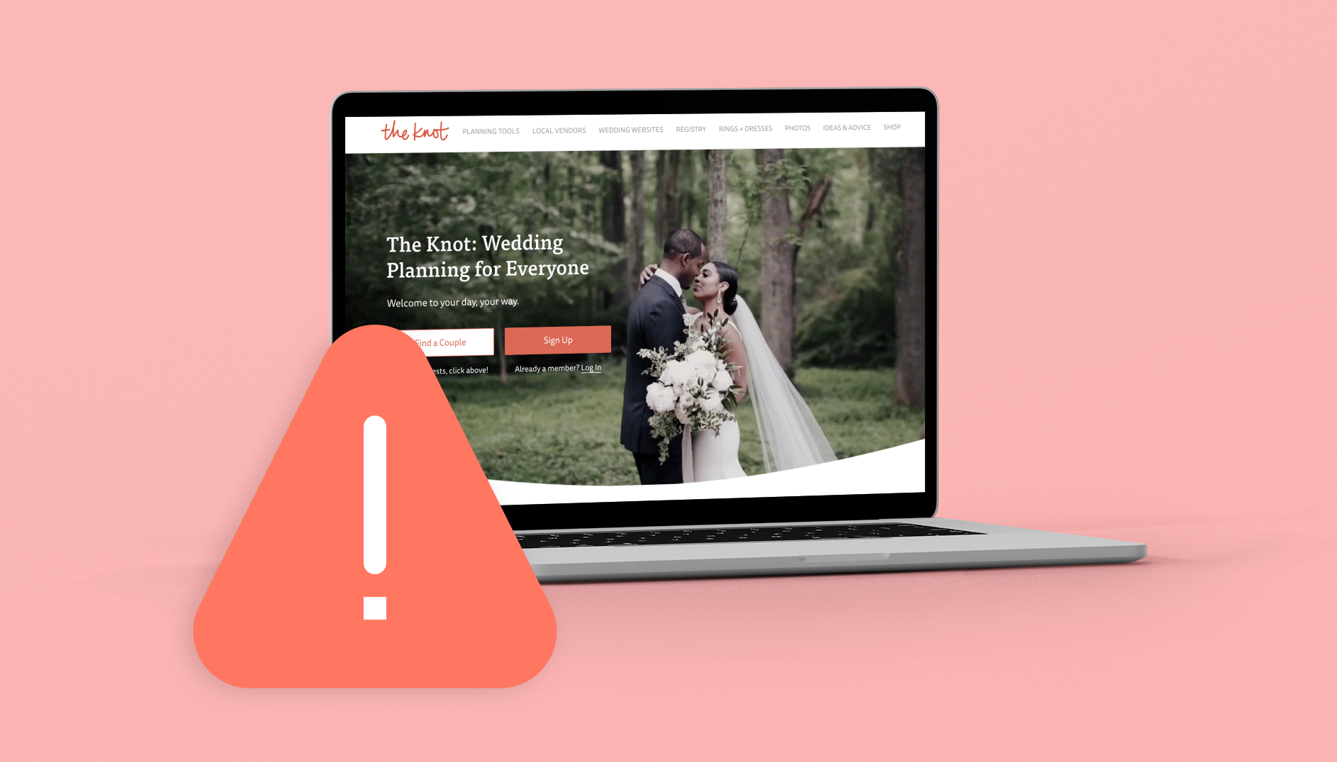 The Knot Wedding Website Beware